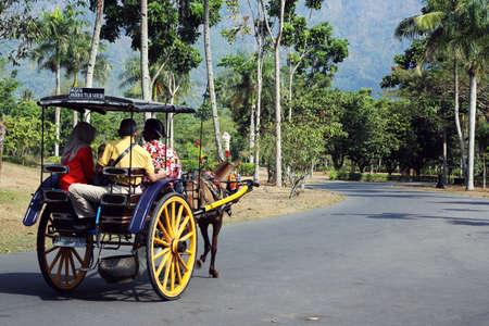 Wenig Pferdewagen am Borobudur Park Standard-Bild - 59315993