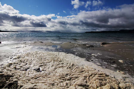tasmania: frozen foam wash on the shore at tasmania