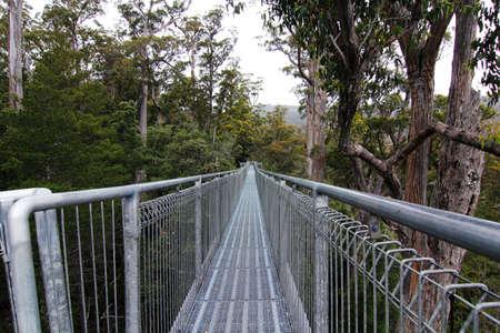 tasmania: Tahune AirWalk at Tasmania