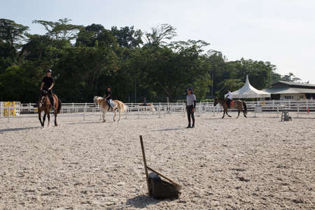 horse riding field with dustpan Editorial