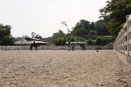horse riding field