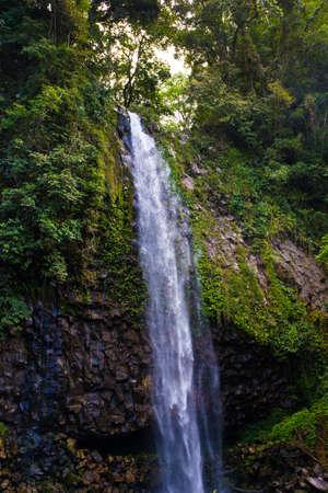 Lembah Anai Waterfall in West Sumatra Standard-Bild