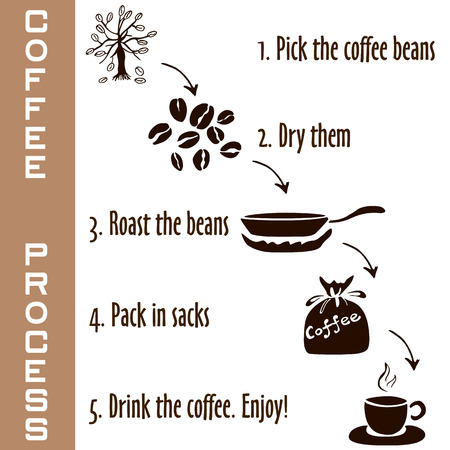 creme: Hand drawn steps of coffee process in brown colors, young coffee sprout to hot coffee drink, sketch style on white background Illustration