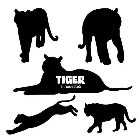sneaking: Set of five big cats or tiger silhouettes, isolated on white background