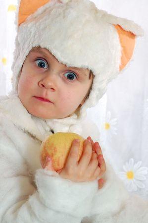 kitten and apple photo