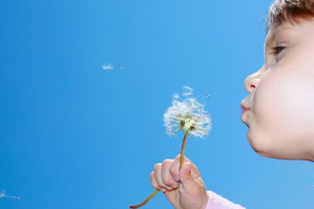 dandelion wind: blowing away