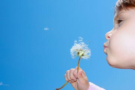 blowing dandelion: soffiando via