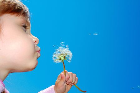 child blowing away dandelion seeds in the blue sky Stock Photo - 5626331