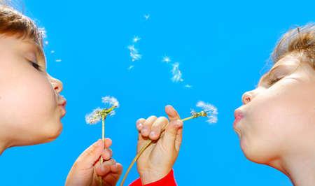 blowing dandelion: cute 4 anni old girls blowing awaygirls semi di dente di leone