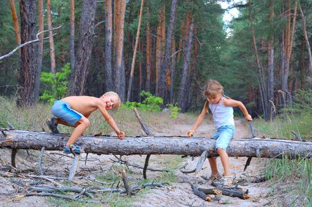 two 5 year old kid playing in the woods with a dry fallen firtree coming over it again and again photo