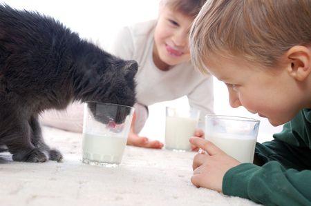 cat and kids drinking milk