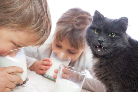 two children playing with a cat and drinking milk photo