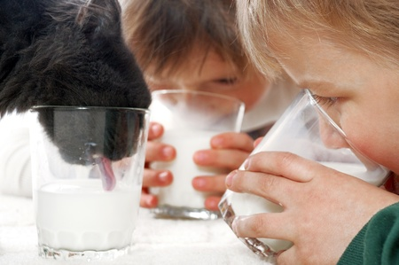 thier: kids and thier cat drinking milk from glasses together
