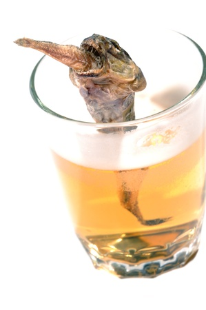 bullhead: Salty fish swallowing a smaller fish. In the glass of beer. Isolated over white.