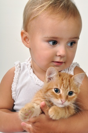 cute little girl with a red kitten Stock Photo - 11690365