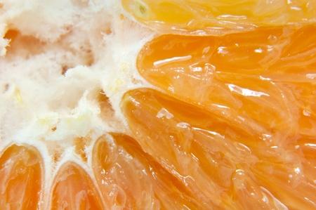 aliments: close-up of fresh juicy orange