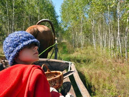 child travelling in a horse-cart along the beautiful country side track photo