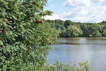 ladoga: Nature Ladoga