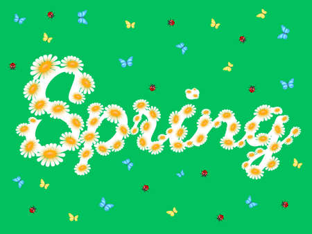 ladybug: Spring chamomiles inscription on green. Floral nature background. Vector flower with butterfly and ladybird