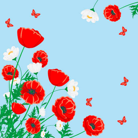 Red poppy and white chamomile illustration. Vector flower with butterfly on blue
