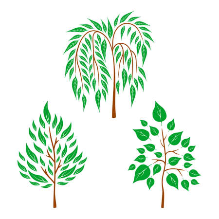 Vector flat trees on white background. Logo design illustration