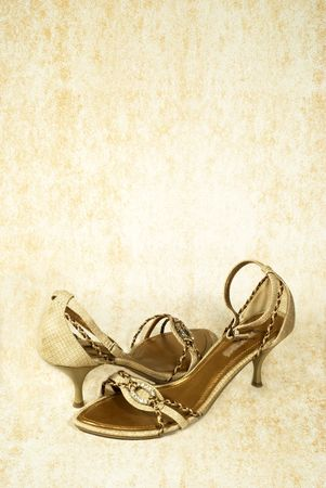 pair of lady's  leather shoes Stock Photo - 3353943