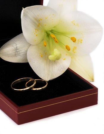 two wedding rings and lily photo