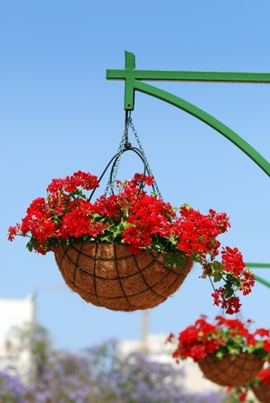 hanging flowers: Flower basket on a post