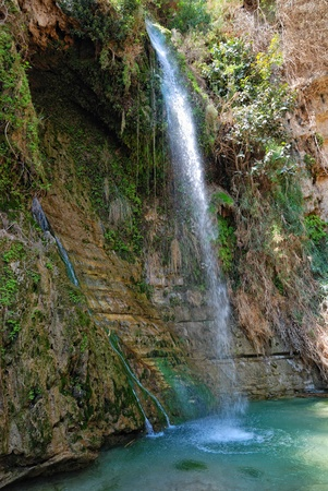 judean hills: waterfall David in the national park Ein Gedi, Israel