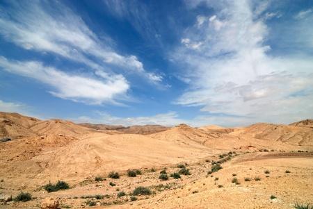 judean: View of Judean desert landscape