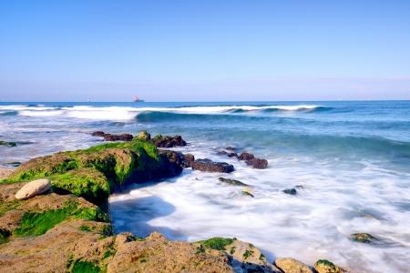 green algae: view of mediterranean sea in Israel
