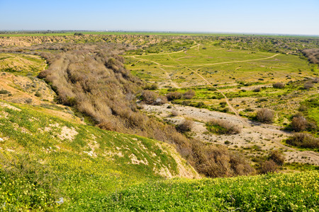negev: view of National Park in Negev, Israel