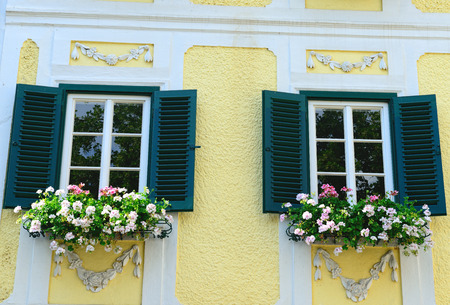geranium color: windows with  geranium flowers and green shutters