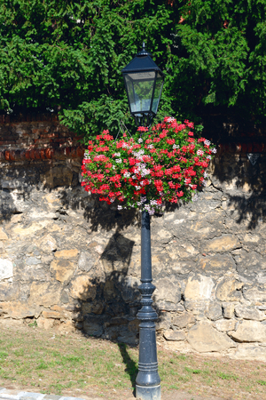 adorned: an iron light post adorned with red-white geranium hanging baskets