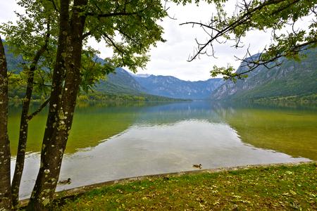 bohinj: Lake Bohinj, Slovenia in autumn Stock Photo