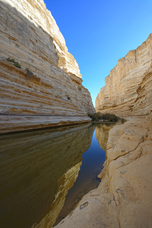canyon negev: Unique canyon Ein Avdat in the Negev desert.  Southern Israel. Stock Photo