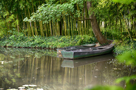 Claude Monet in summer garden, boat in the lake among the bamboo groves