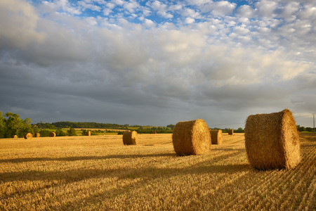 Hay bale on the field in the evening. France.