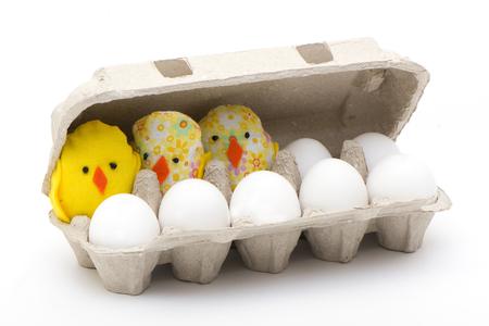 trabajo manual: huevos y pollos de trabajo hecho a mano en una célula ecológico