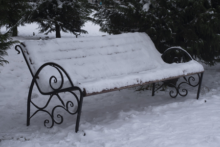 One bench in full screen. bench covered in snow. In the background is a Christmas tree. Christmas tree in the snow. Its cold outside. Banco de Imagens