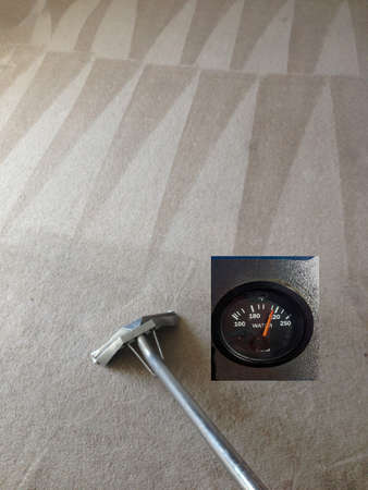 Carpet Cleaning with Steaming Hot water