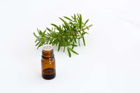 Thyme essential oil Stock Photo - 83522784