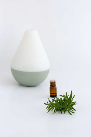 Thyme essential oil Stock Photo - 83522788