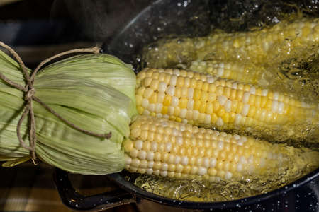 boiling: Boiling Corn on the Cob