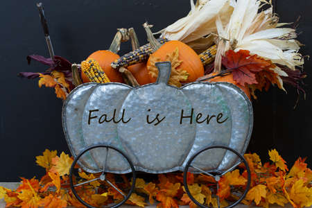 Fall is Here Reklamní fotografie