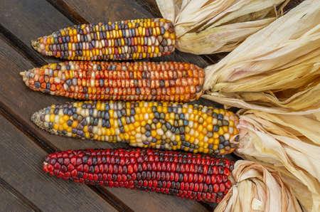 Colorful corn