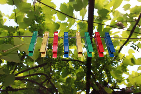 clothes pegs: Abstract picture of colors with clothes pegs