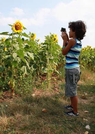 Little boy is taking photo of beautiful sunflowers photo