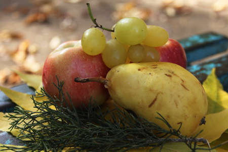 Autumn still life with fresh fruits and yellow leaves photo