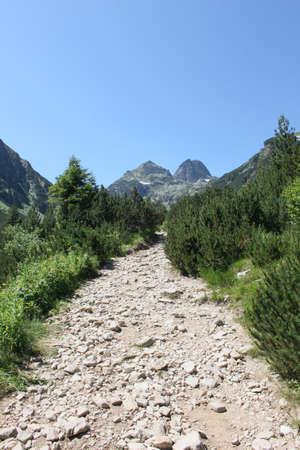 carretera: Caminar en la hermosa montaña de Rila, Bulgaria